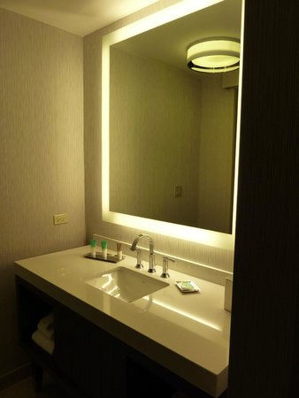 Hyatt Centric Chicago Magnificent Mile : Bathroom1