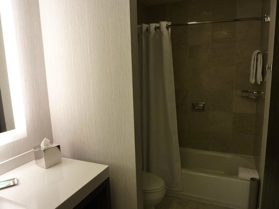 Hyatt Centric Chicago Magnificent Mile : Bathroom2