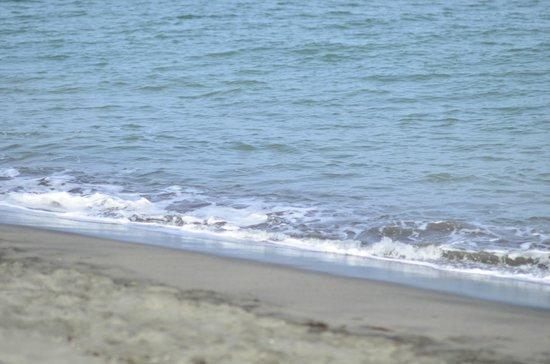 NorMi2's Beachfront Resort: beach