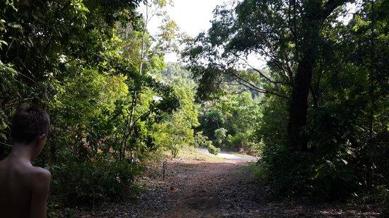 Vivanta by Taj Rebak Island, Langkawi: Caminho entre os chalés