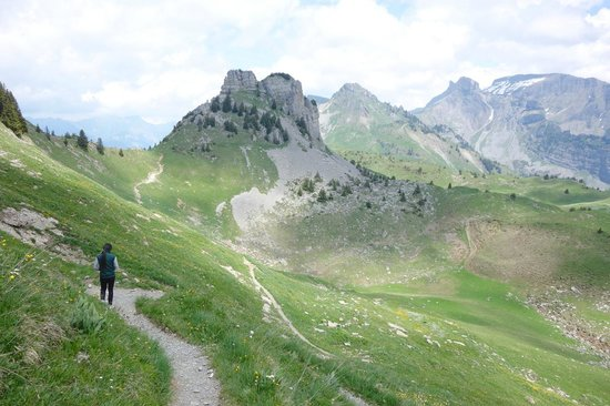 Schynige Platte : great hiking area.