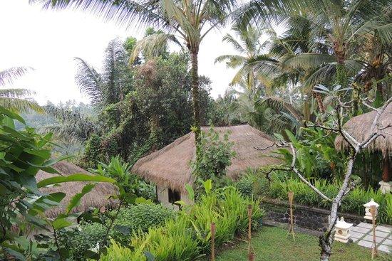 Nandini Bali Jungle Resort & Spa: ジャングルの中に隠れ家のように立っている客室