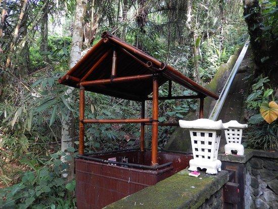 Nandini Bali Jungle Resort & Spa: 敷地内の上下を移動するゴンドラ