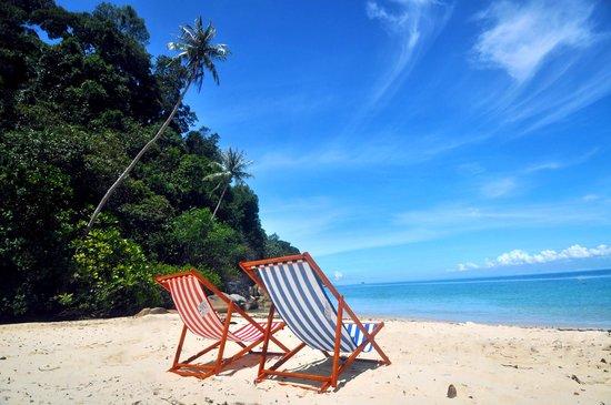 Bubbles Dive Centre and Resort: Enjoy the sun sea beach at Bubbles