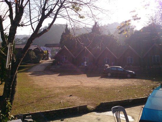 Phu Chi Fa Forest Park: Phu Chi Fa 6