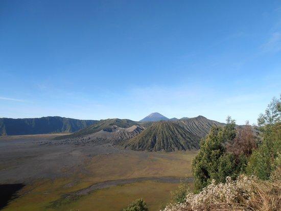 Lava View Lodge : Mont Bromo