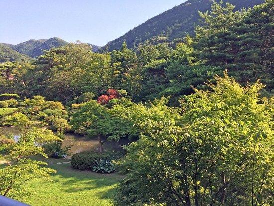 Shikisai Ichiriki: 日本庭園