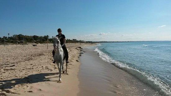 SENTIDO Le Sultan : Ranch - balade sur la plage