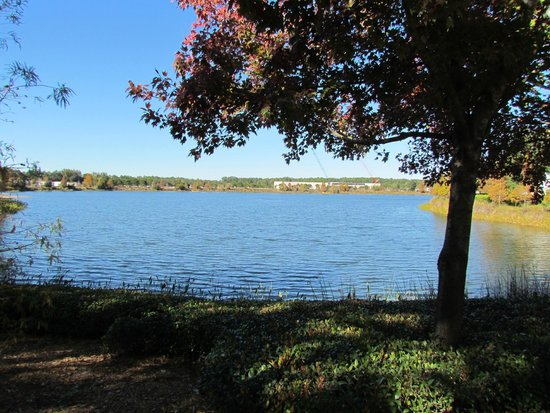 Disney's Pop Century Resort: Lago