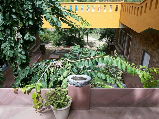 Devra Udaipur : Lovely garden