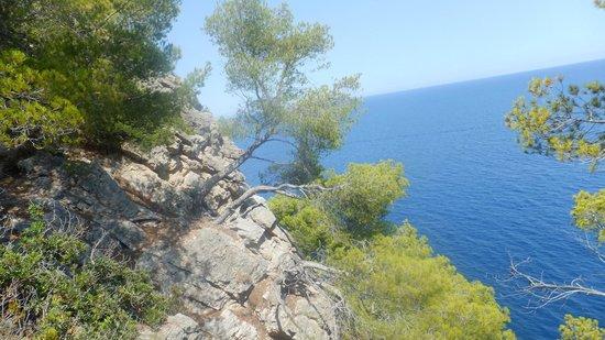 Beach Club Font de Sa Cala : vue lors de promenade aux alentours