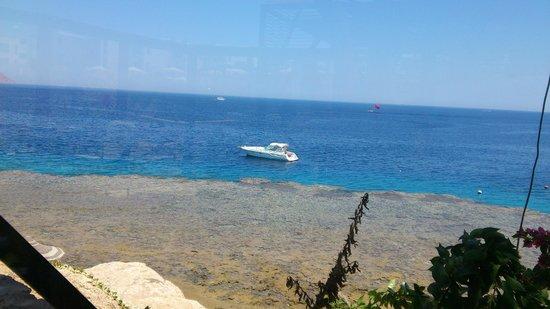Island View Resort : видс ресторана Фатима