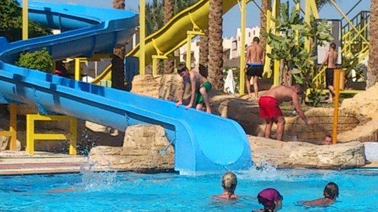 Island View Resort : горки
