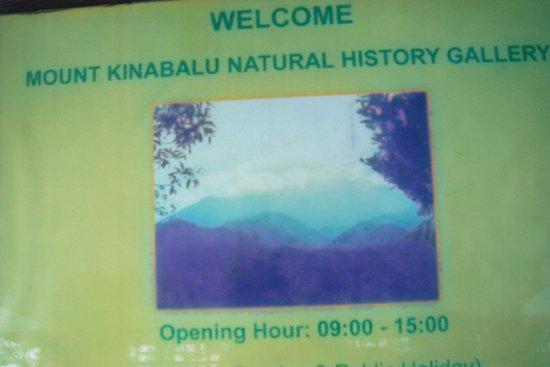 Kinabalu Park : Natural History Gallery