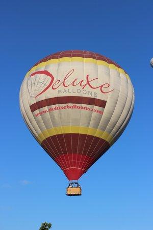 Deluxe Balloons