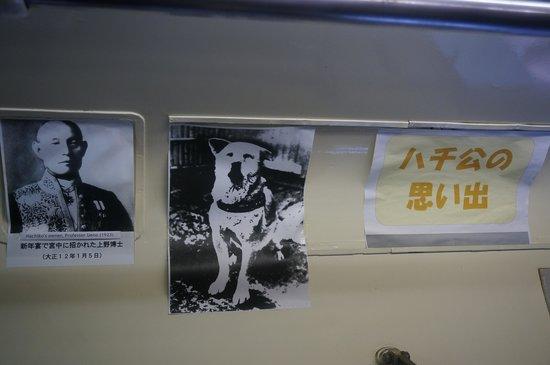 Hachiko: 八公與主人的相片
