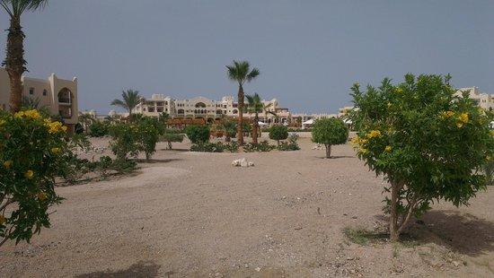 Kempinski Hotel Soma Bay : Aussenbereich vom Strand zum Hotel