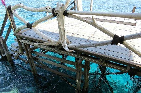 Raja Ampat Dive Lodge : Warna biru yang mempesona & kejernihan air (plus karang & ikan) dilihat dari dermaga