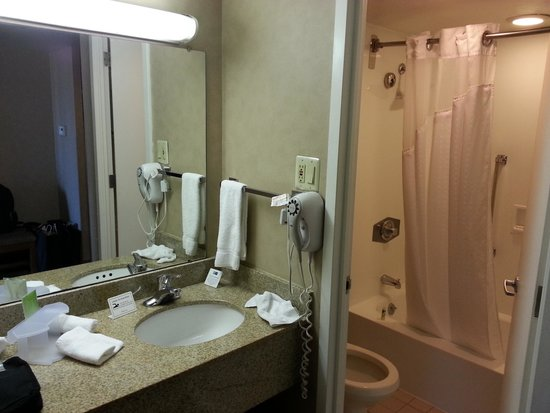 Holiday Inn Express Midtown Philadelphia: Bathroom