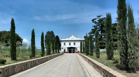 Villa Tolomei Hotel and Resort : l arrivée au domaine
