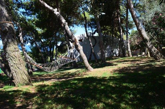 Pine Bay Holiday Resort: гамаки