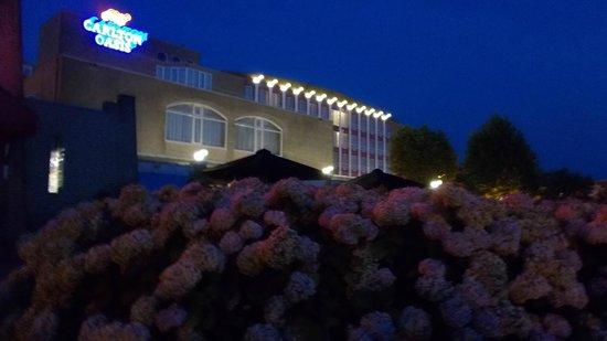 Carlton Oasis Hotel : hotel van af het terras
