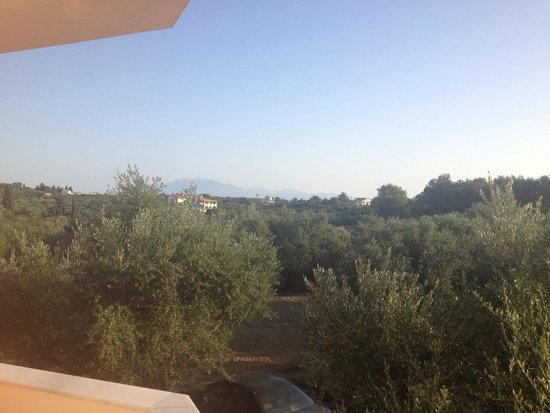 Zante Pantheon Hotel: View from our superior room balcony, over the olive groves.  Beautiful!