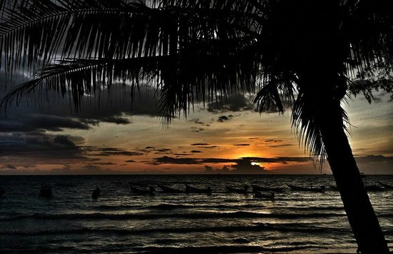 Scuba Junction Diving Co. Ltd: Night is coming to Koh Tao