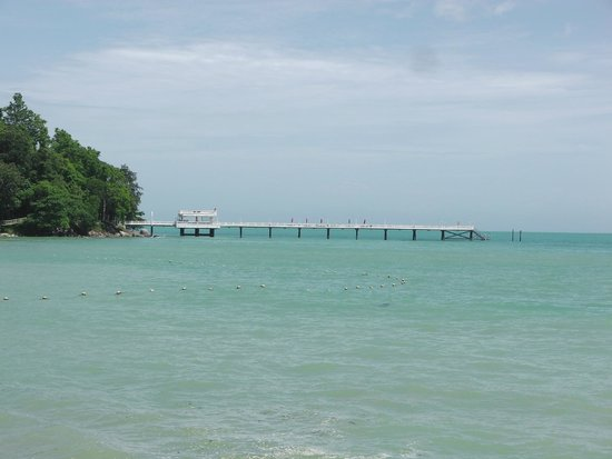 Amari Phuket: Amari pier. Some nice coral and fish, good snorkeling.