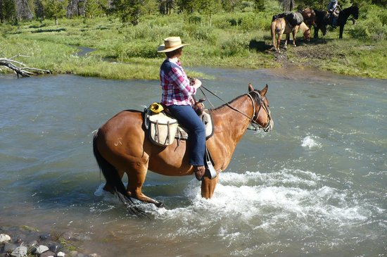 T Cross Ranch: River runs wild!