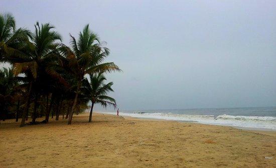Linger, Palathra Heritage Mararikulam : Marari Beach!