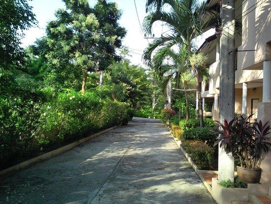 Lamai Buri Resort: Дорожка на улицу к морю.