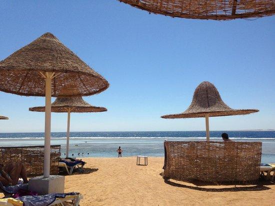 Radisson Blu Resort, Sharm El Sheikh : Beach