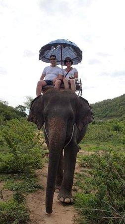 Hutsadin Elephant Foundation: great view!