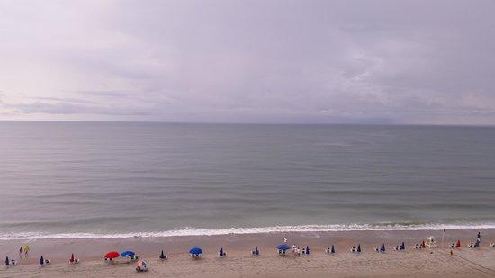 Compass Cove Oceanfront Resort : beach view