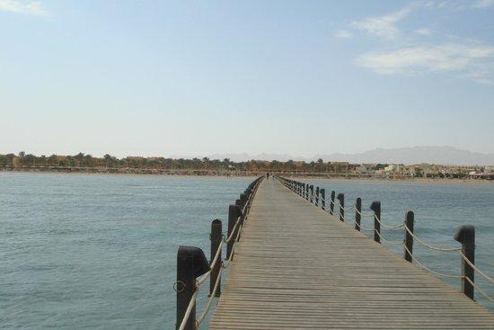 Stella Di Mare Beach Resort & Spa Makadi Bay: Вид на пляж