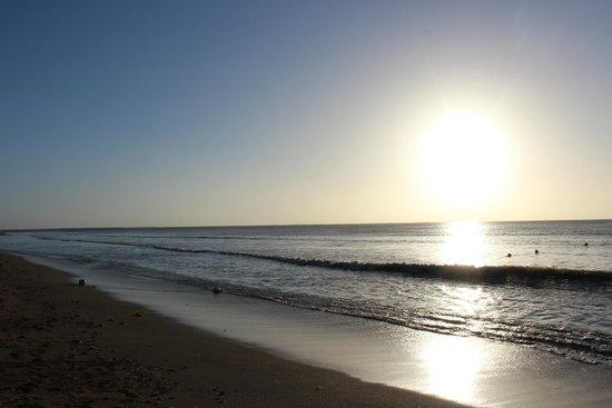 Bedarra Beach Inn: Sunset