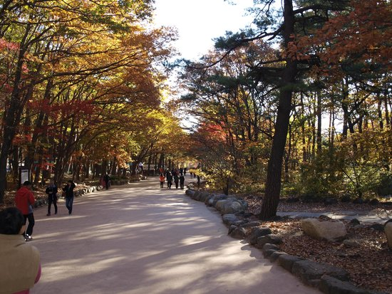 Seoraksan National Park: colourful vista