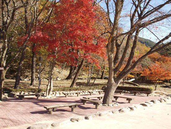 Seoraksan National Park: colourful view