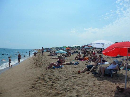 Aqua Hotel Onabrava & Spa: plage