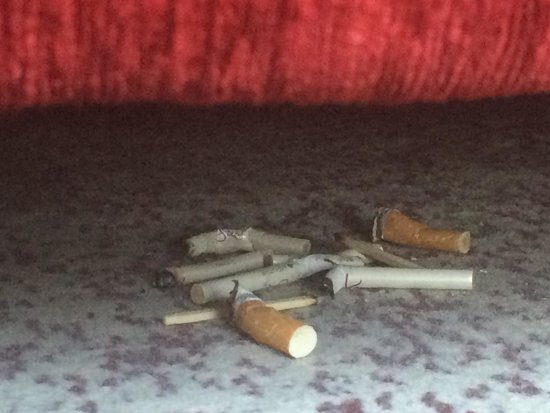 Es Saadi Gardens & Resort: cigarettes under the bed