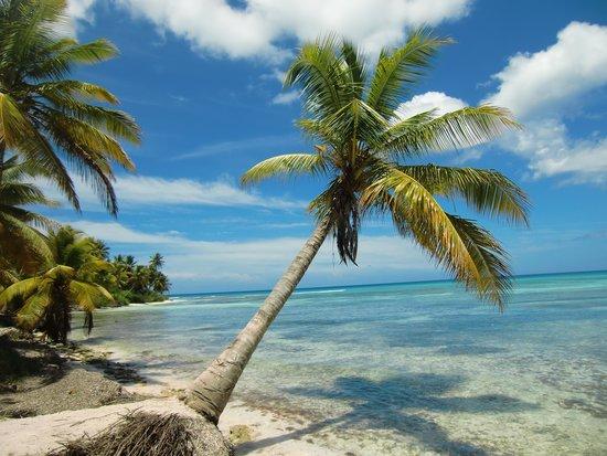 Grand Bahia Principe La Romana: Isla Saona