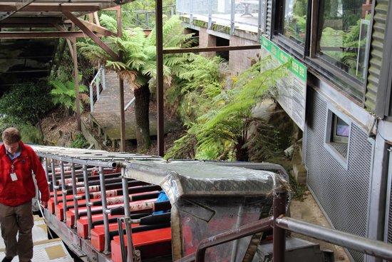 Scenic World Blue Mountains: Железная дорога