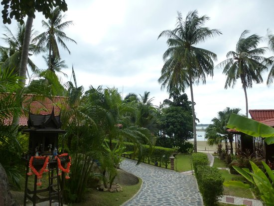 Cyana Beach Resort: View of the grounds