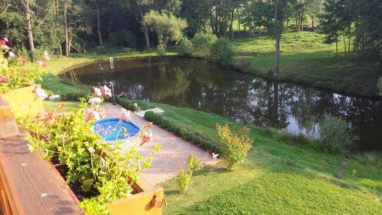 """Hotel Stein: """"POOL"""" und Teich"""