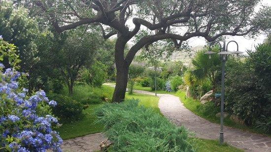 Cruccuris Resort: giardino