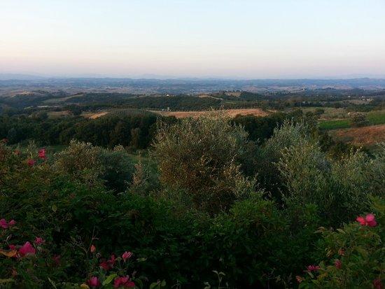 Rigone in Chianti: Aussicht