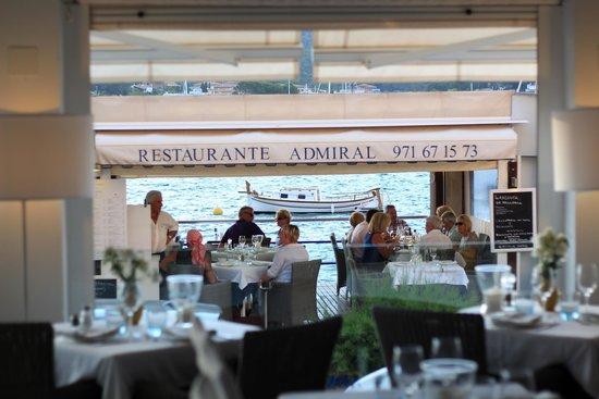 Admiral: terraza exterior