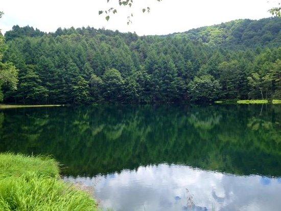 Mishakaike Pond: 御射鹿池 2014年7月22日撮影