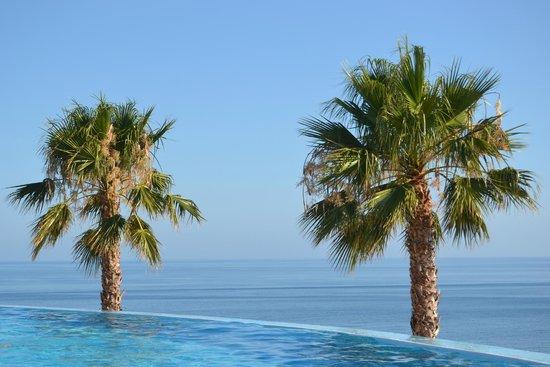 Playacalida Spa Hotel: Piscina panorámica